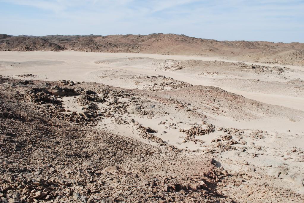 Vue du wadi Samut el-Beda depuis l'est. Au premier plan, des cabanes de grande taille (© B. Redon, MAFDO)